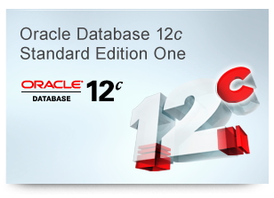 oracle-database-standard-edition-one